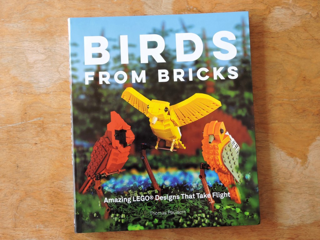 birds_from_bricks_cover